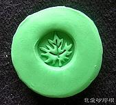 皂章區:葉子-6