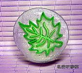 皂章區:葉子-2
