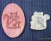 皂章區:高貴貓