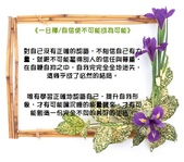 心靈甘露:264_10671.jpg