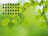 心靈甘露:1600green_3005.jpg