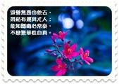 心靈甘露:18-deep-blue-perfume.jpg
