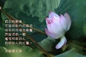 心靈甘露:207500589_x.jpg