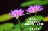 心靈甘露:208779710_x.jpg