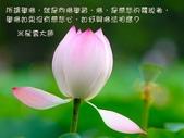 心靈甘露:208014498_x.jpg