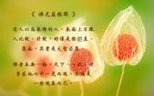 心靈甘露:214737075_x.jpg