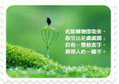 心靈甘露:green-1024-768.jpg