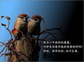心靈甘露:倉央嘉措詩選9.jpg