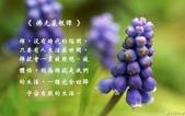 心靈甘露:214736959_x.jpg