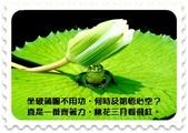 心靈甘露:1690-113180.jpg