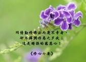 心靈甘露:1234561_thumb.jpg