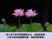 心靈甘露:3166312013020379898.jpg