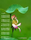 心靈甘露:3775986812573644340_meitu_5.jpg