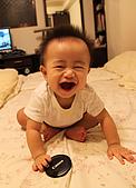 Baby-曾小維寫真:8個月
