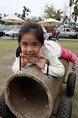 清境-夏都夢幻山林二日遊:園內的草地上還有用紙製成的小堆車