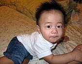 Baby-曾小維寫真:9個月