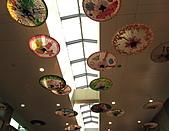 2010 日本北海道富良野~TOMAMU 渡假村:桃園國際機場 - 第二航站