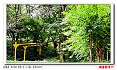 酷暑關東行:DSC09146.jpg