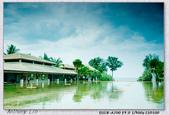 泰國普吉島開會 受困黃衫軍霸佔曼谷機場:DSC04372.jpg
