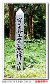 酷暑關東行:DSC09150.jpg