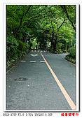 酷暑關東行:DSC09237.jpg