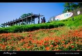 大溪花海農場:DSC05973-2.jpg