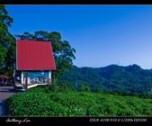 大溪花海農場:DSC05992-2.jpg