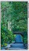 熊貓來前夕 走拍動物園:DSC09294.jpg