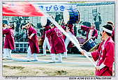 久留米城島酒藏:DSC00346.jpg