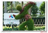 2016 士林官邸菊花展:DSC08180.jpg