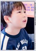 2008 台北好精彩 + 2008 傳藝遊園之美 攝影比賽 :DSC07730ss.jpg