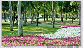 大安森林公園台北花卉展:DSC07560.jpg