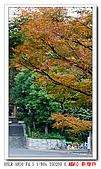 A-850 新宿行:DSC00970.jpg