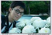 士林官邸菊花展:DSC03116.jpg