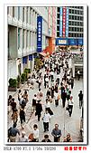 酷暑關東行:DSC09074.jpg
