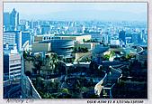 大阪 難波 道頓堀:DSC02364.jpg