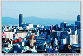 大阪 難波 道頓堀:DSC02368.jpg