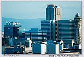 大阪 難波 道頓堀:DSC02383.jpg