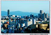 大阪 難波 道頓堀:DSC02394.jpg