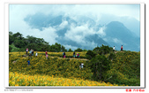花蓮六十石山  ----- 仁者樂山:DSC05440.jpg