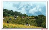花蓮六十石山  ----- 仁者樂山:DSC05439.jpg