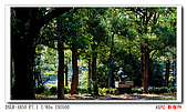 A-850 新宿行:DSC01036.jpg