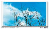 淡水 水公園:DSC02025.jpg