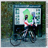 陽明山楓葉--略紅:DSC06986.jpg