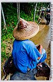泰國普吉島開會 受困黃衫軍霸佔曼谷機場:DSC03939.jpg