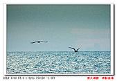 漁人碼頭:DSC00373cc.jpg