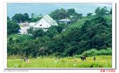 花蓮六十石山  ----- 仁者樂山:DSC05444.jpg