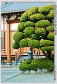 日本九州行:DSC00646.jpg