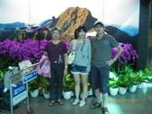香港自由行:1318664793.jpg