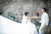 婚紗照:1795657699.jpg